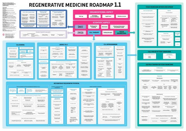Regenerative medicine roadmap